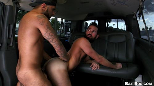 hairy-gay-for-pay