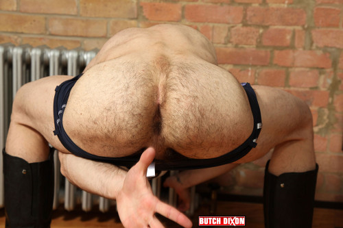 hairy-male-butt