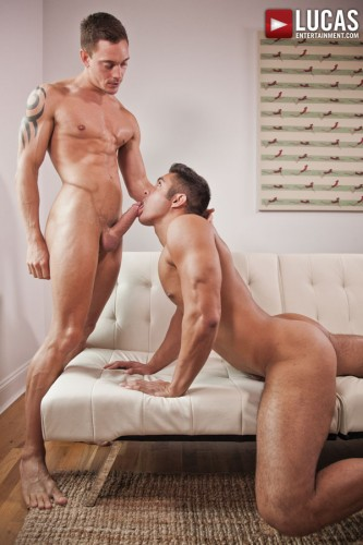 muscle-gay-blowjob
